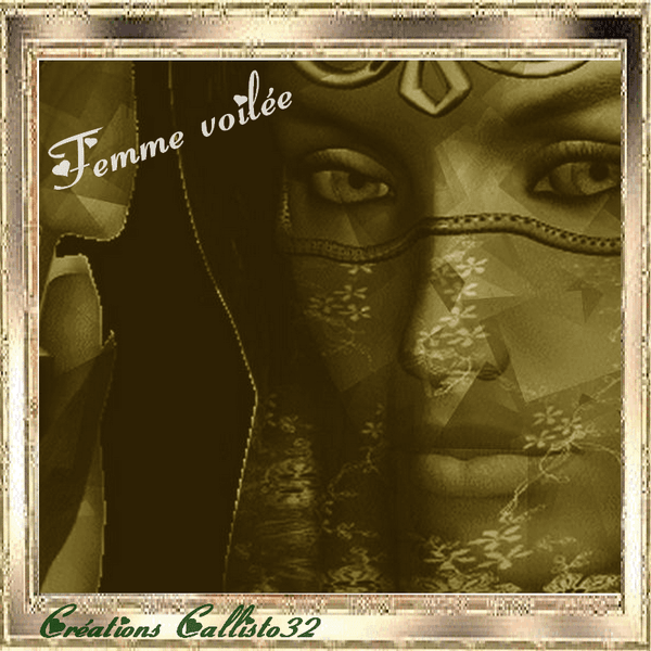 FEMME VOILÉE