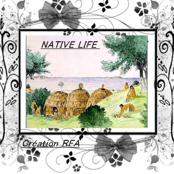 NATIVE LIFE - VIE AMÉRINDIENNE