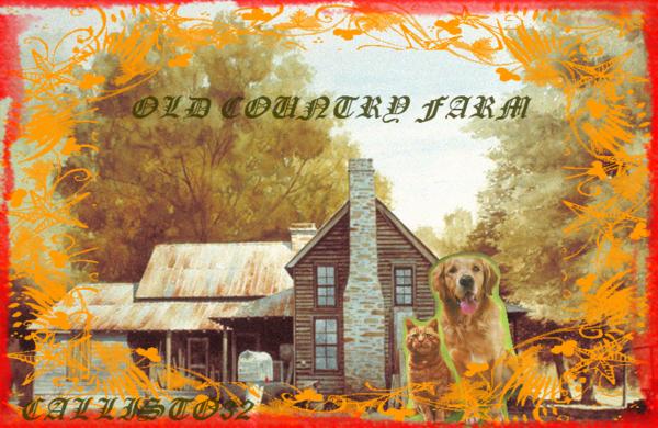 OLD COUNTRY FARM (ma création)